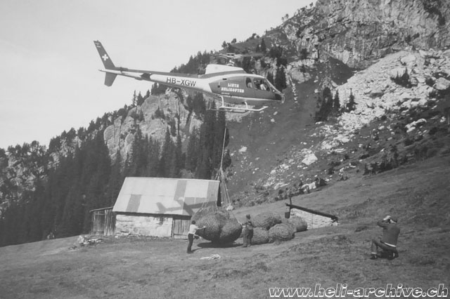 Glarus Alps, early 1980s - The AS 350B Ecureuil HB-XGW operated by Linth Helikopter transports a net of hay (family Kolesnik)
